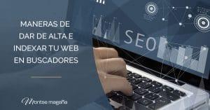 indexar web